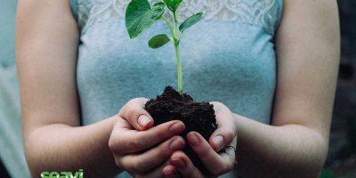 Año 2021: Economía creativa y sostenible.