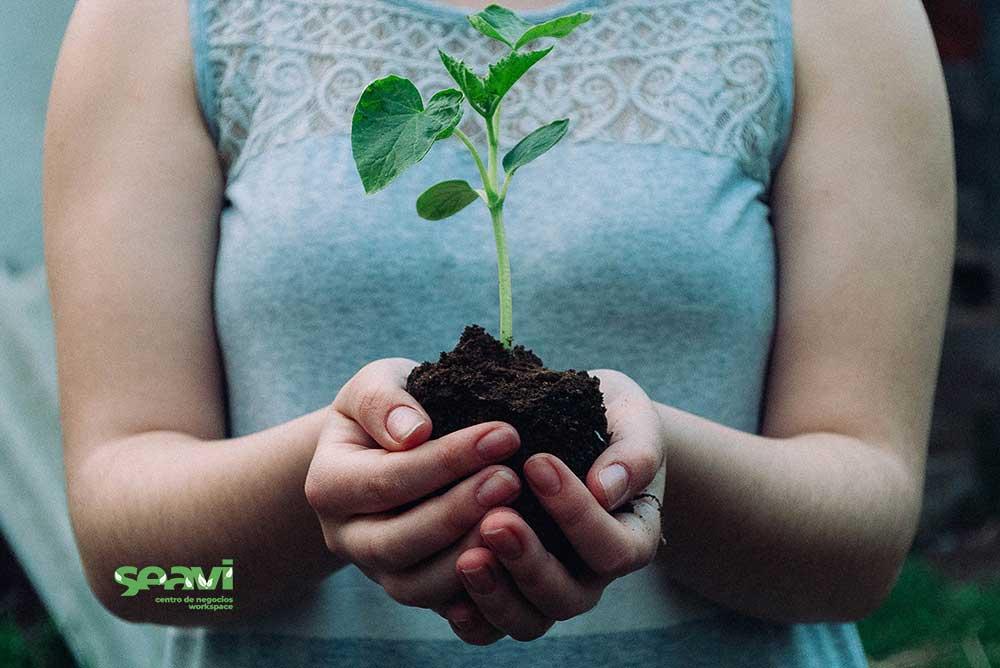desarrollo-sostenible-seavi